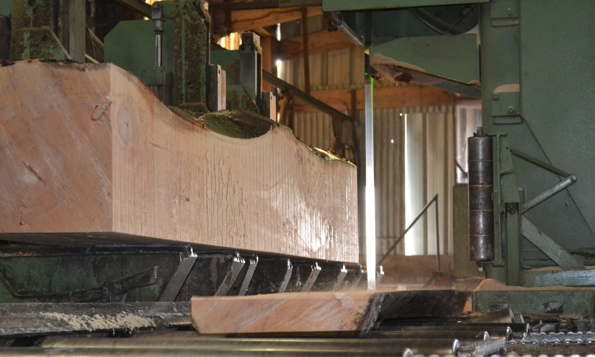 Beech and softwood sawmill